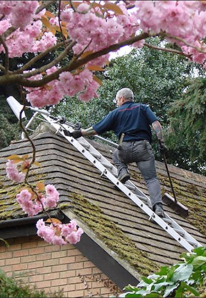 Our staff cleaning the moss from a roof in Hook near Basingstoke